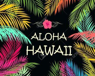 Hawaii Party в Ugolөk